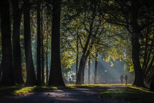 Dag van de Duurzaamheid: spanningsveld tussen duurzaamheid en mededinging