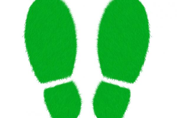 Wetsvoorstel Wet ruimte voor duurzaamheidsinitiatieven