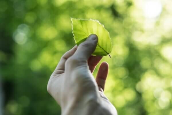 Aanscherpingen ACM in concept Leidraad Duurzaamheidsafspraken na consultatie